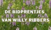 Bidprentjes van Willy Ribbers